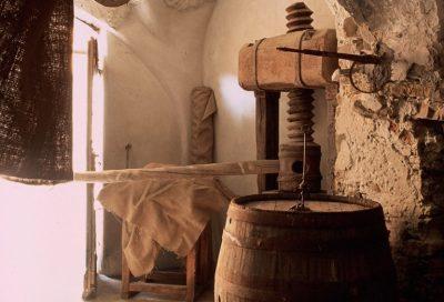 museo-olio-scorcio